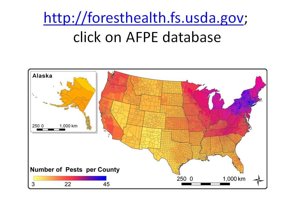 Numbers Of Non Native Pests In Counties Of The 49 Continental States Map Prepared By Andrew Liebhold Usfs In 2014 More Recent Introductions Are Not